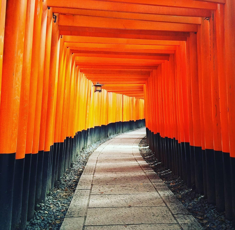 En hiver au Japon, c'est la saison du saké chaud !
